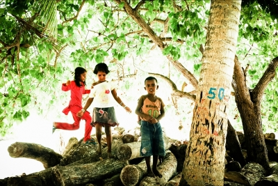 Tree no. 50
